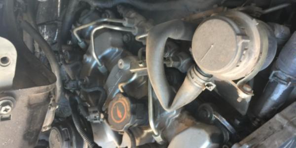 汽车保养,沃丹机油